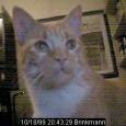 Webcam-Bild_6